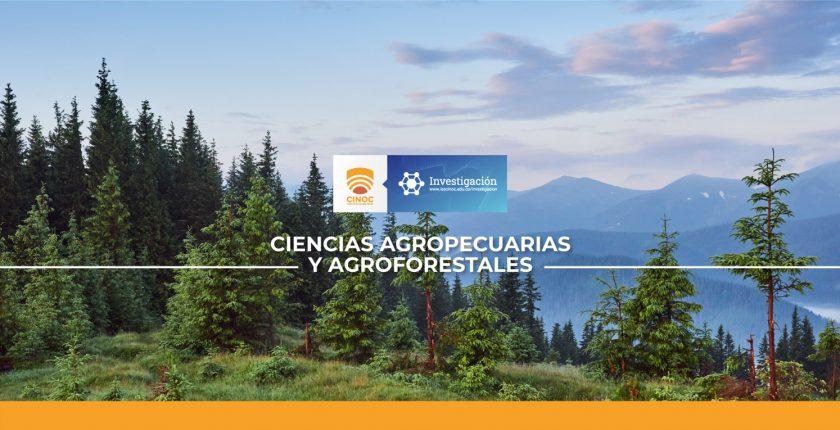 bosque, forest, investigacion