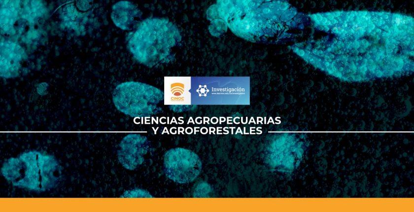 Determinar la compatibilidad y el tiempo de supervivencia de cuatro microorganismos benéficos de uso agrícola en bioles.