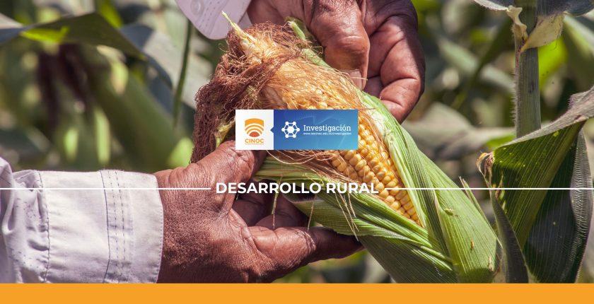maiz,corn,agro,farmer,colombia