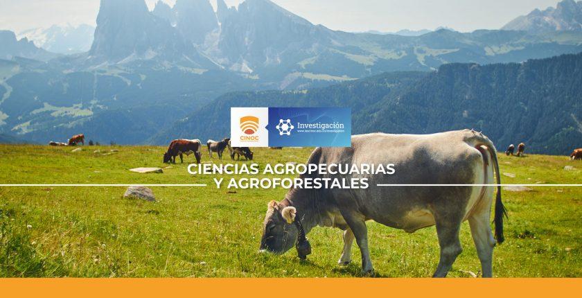 vaca,cow.bovino,investigacion